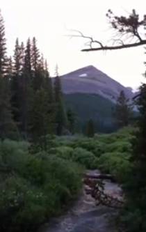Camping in Pike National Forest Colorado from Starling Travel