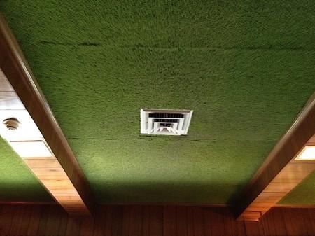 Graceland Green Shag Carpeting on the Ceiling