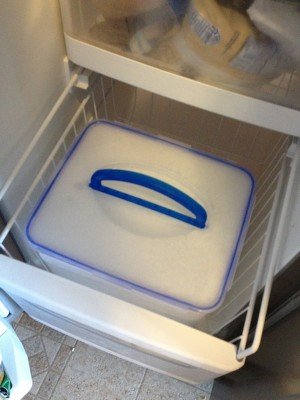 Snapware Ice Block in Freezer