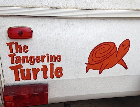 The Tangerine Turtle from Starling Travel