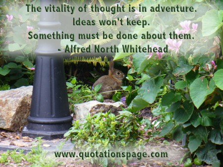 The vitality of thought is in adventure. Ideas won't keep. Something must be done about them. Alfred North Whitehead from The Quotations Page