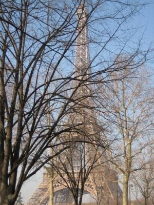 Eiffel Trees by Megan Wallent