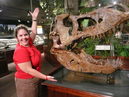 My T-Rex Skull at The Museum of the Rockies